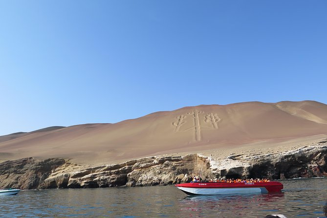 Ballestas Islands + Paracas National Reserve from Lima (Small group) photo 10