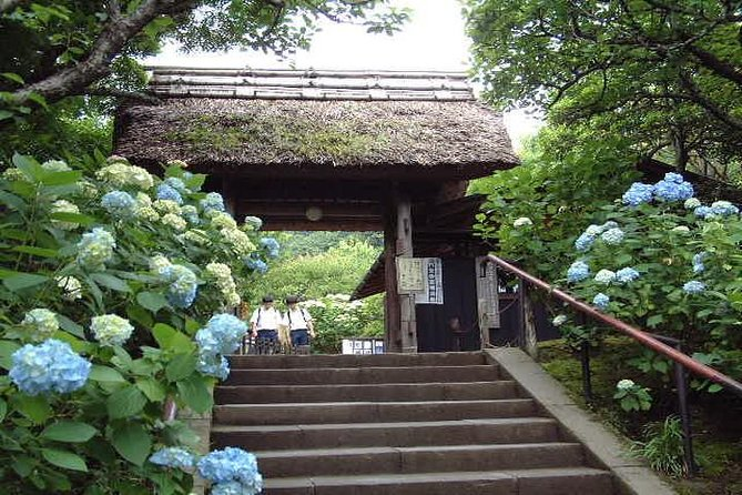 Kamakura Kotoku-in and Hasedera Tour with Nationally-Licensed Guide