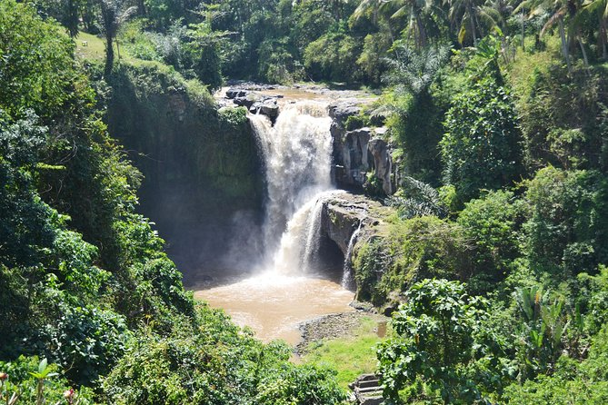 Best of Bali : Bali Temples , Rice Terrace and Waterfall Tour