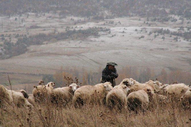 Excursión privada a Kazbegi desde Tiflis