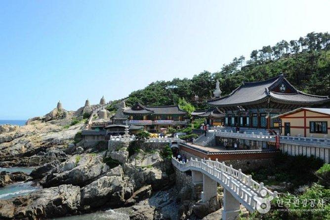 Full-Day Busan Essential Tour with Heaedong Yonggungsa and Gamcheon Village