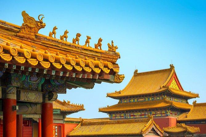 Half Day Forbidden City Private Tour - All inclusive