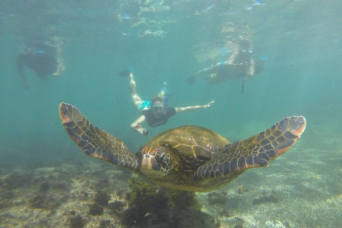 5 Day Galapagos Island Hopping Classic