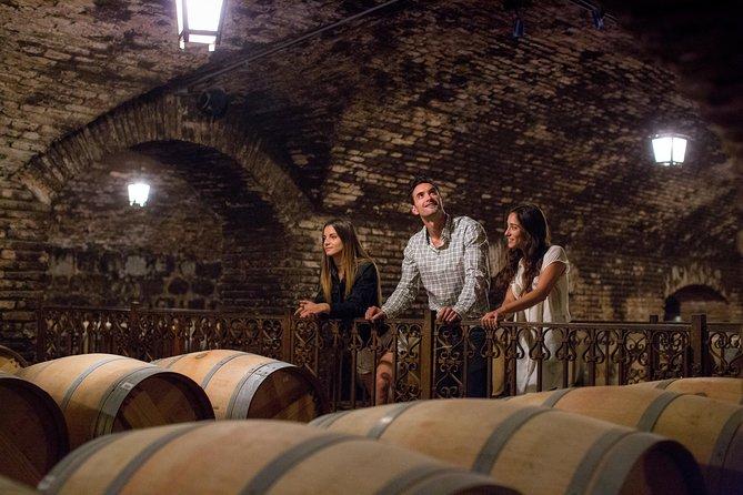 Concha y Toro Winery