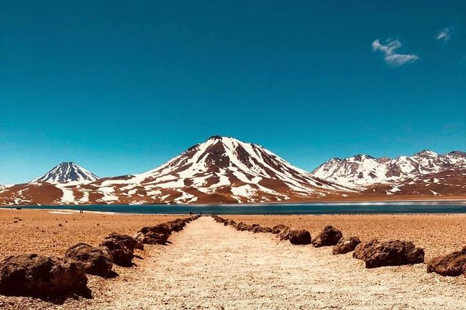 Semi Private Tour to Altiplanic lagoons, Atacama saltflat & Flamingo reserve