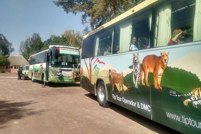 Africam Safari Zoo Admission with Transportation