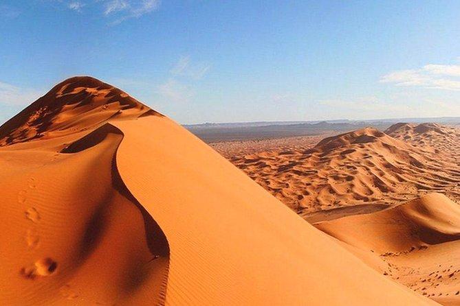Morning Red Dunes Desert Safari