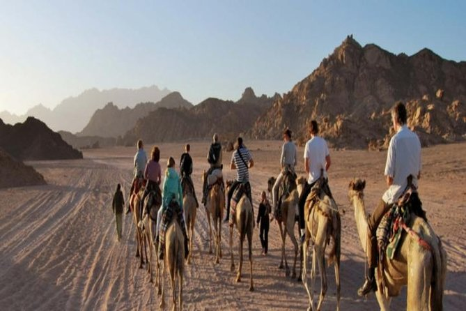 Hurghada Bedouin Desert Safari by Jeep photo 3