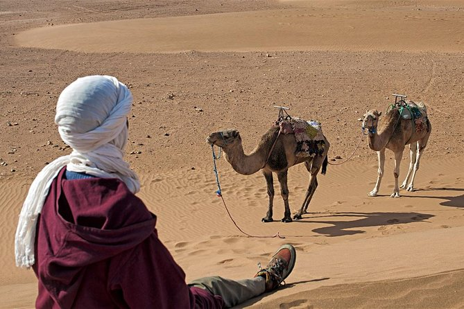 Tours from Marrakech to the sahara of zagora in 2 days including camel ride