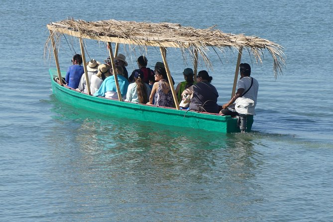 Jungle Tour Coyuca Lagoon 1 Hour Boat Ride & Baby Turtle Release Tour With Lunch