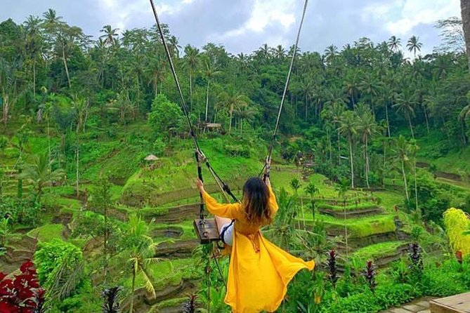 Private Ubud Tour With Jungle Swing