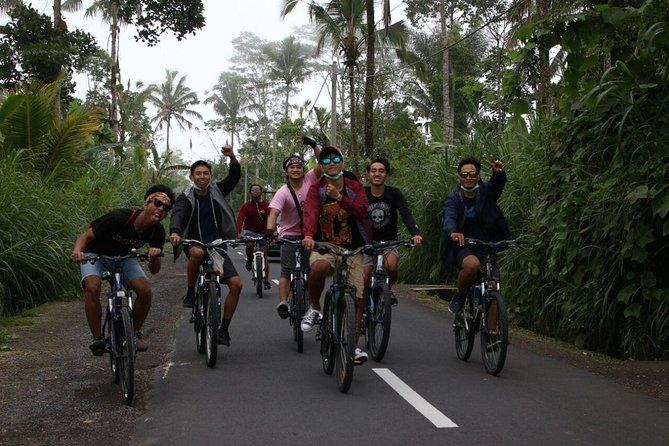 Bali Cycling & Sightseeing