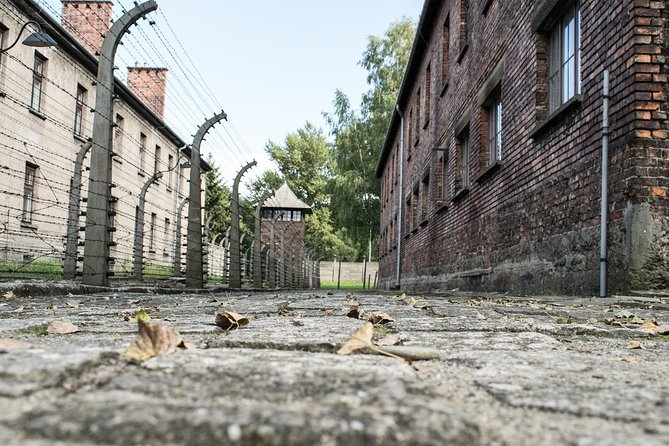 Auschwitz-Birkenau: Self-Guided Tour with Guidebook from Krakow photo 4