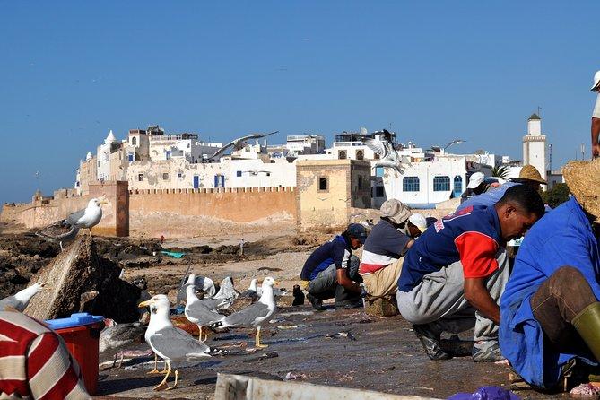 Essaouira Mogador Journey From Marrakech