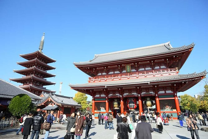 8-hour customizable Tokyo tour, with Private Car, to/from Tokyo