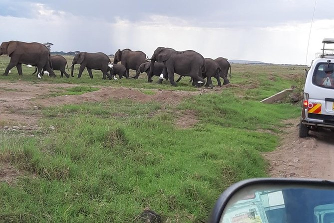 Amboseli National Park Guided Full Day Tour photo 4
