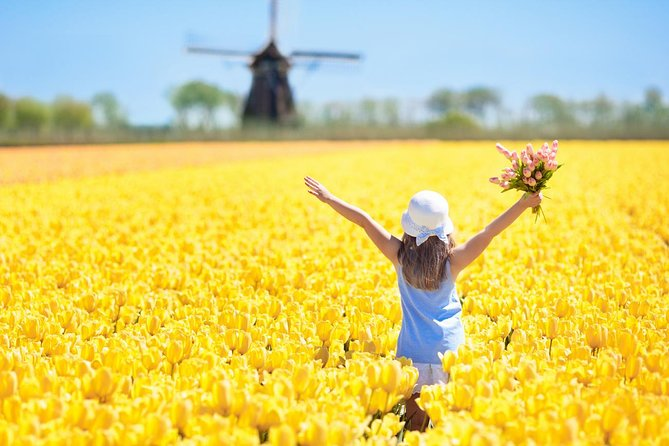 Netherlands Tulip fields, Windmills and Local Experiences Tour