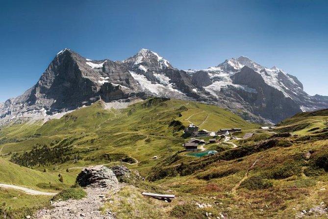 Berner Oberland - Tagesausflug von Luzern: Kleine Scheidegg und Jungfraujoch-Panorama