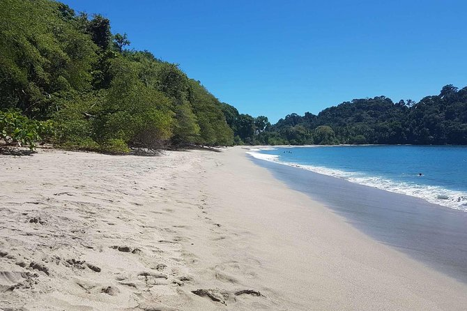 Manuel Antonio National Park; Beach & Sightseeing Day Trip from San Jose