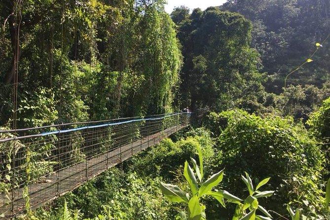 Puntarenas or Caldera Highlights Shore Excursion. Best 6-in-1 Combo Tour