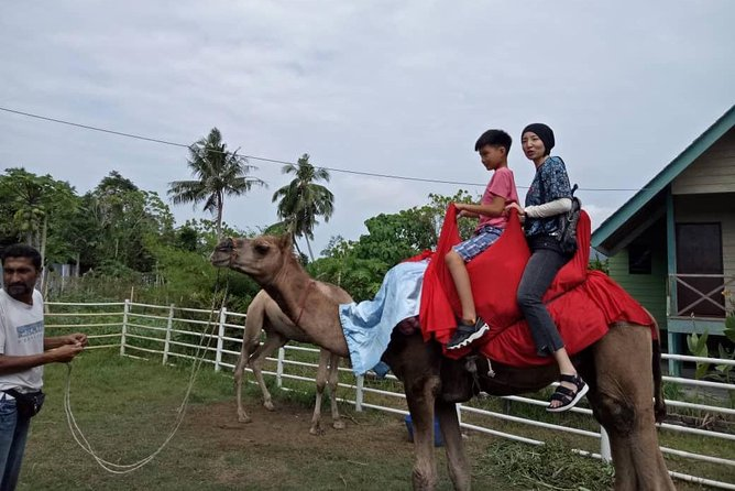 1 Day Balik Pulau and Batu Ferringhi depart from georgetown by motorcoach