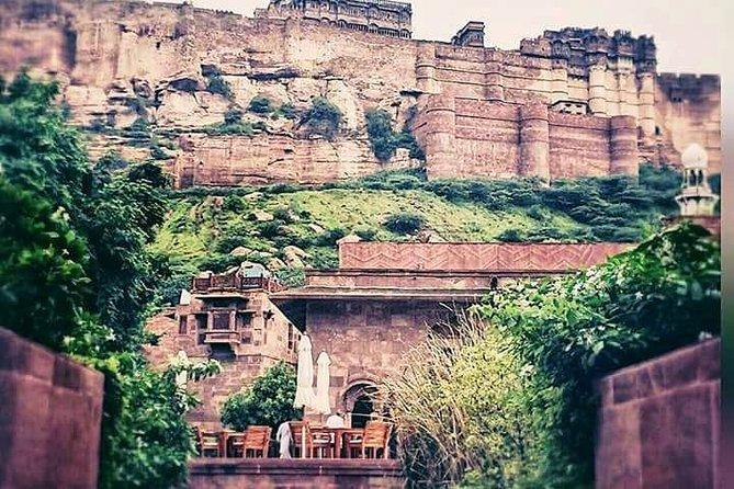 Best of Alluring Jaipur