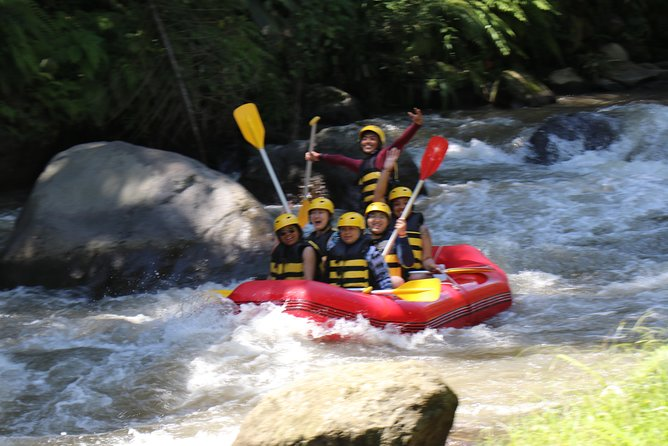 Bali White Water Rafting All Inclusive With Transportation and Lunch photo 18