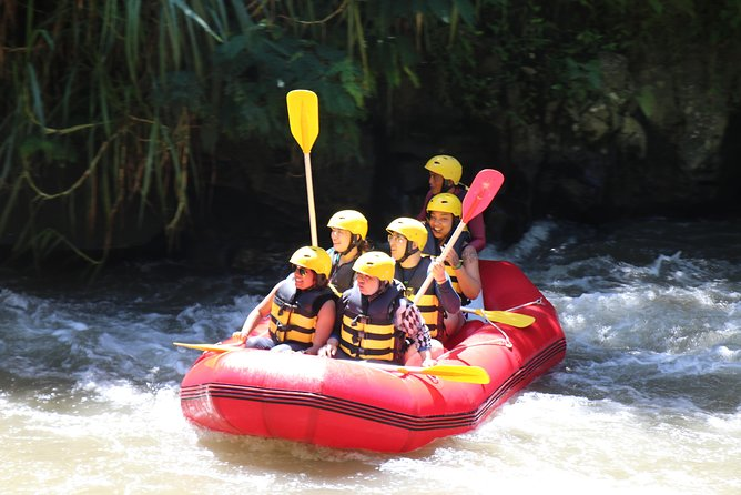 Bali White Water Rafting All Inclusive With Transportation and Lunch photo 50
