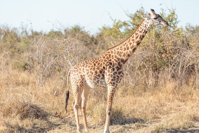 23-Day Kruger Victoria Falls and Zanzibar Overland Tour from