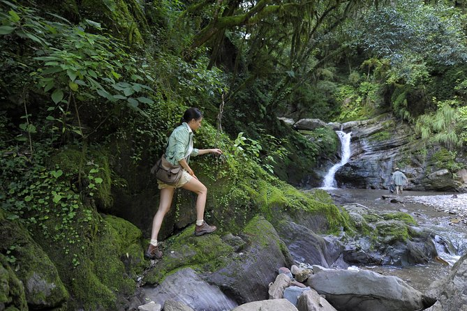 Yungas Half-Day Tour from Tucuman