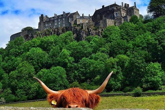 Private Edinburgh Shore Excursion Driving Tour to Stirling, Battle Of Banockburn