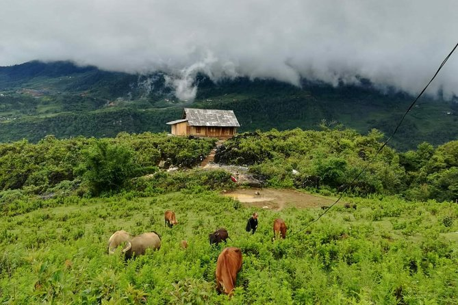 Sapa trekking at homestay from Hanoi