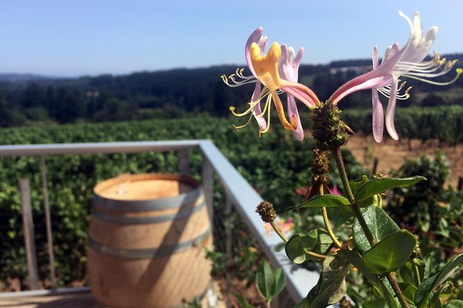Willamette Valley Character Winery Tour