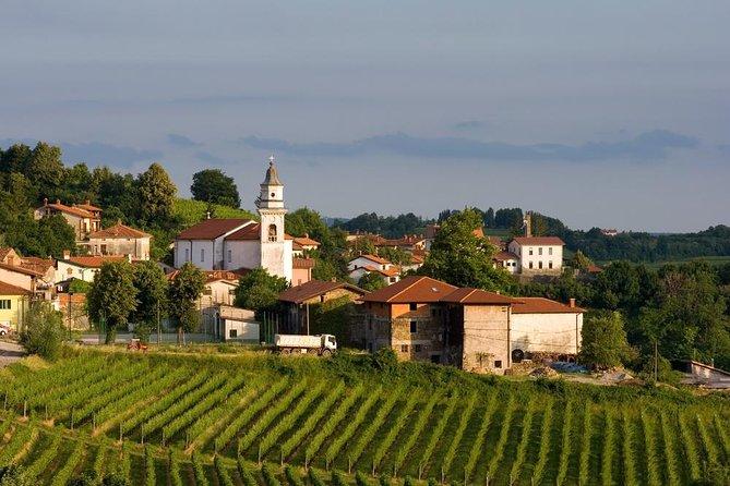 Private tour of Goriska Brda wine hills from Ljubljana