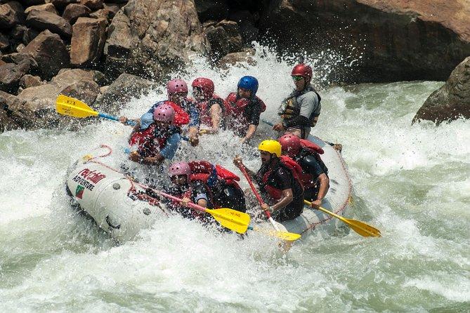 Rafting in Rishikesh - 26km