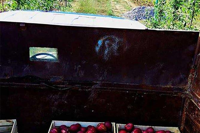 Agritour to Quba - tour to the apple farm