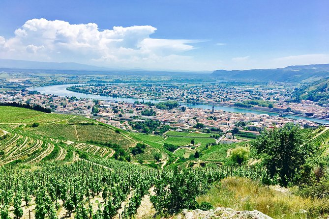 Northern Rhône Valley Customizable Private Day Tour with Wine Tasting from Lyon