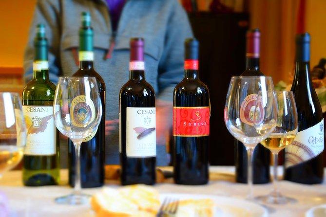 Cesani Wine Experience