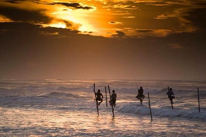 Sri Lankan South Beach Tour Package 5 Days 4 Nights Dream Lanka Tours Family