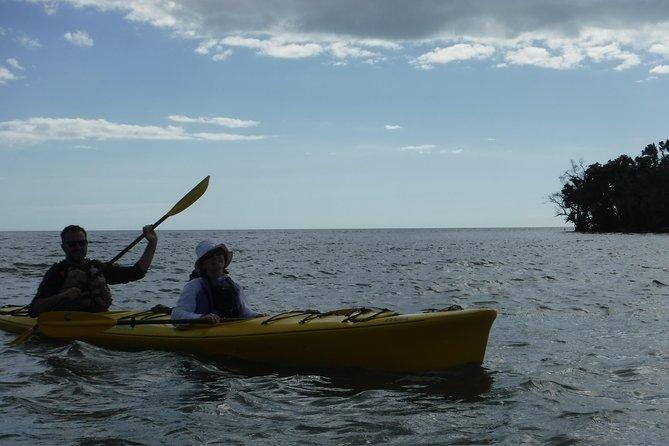 Everglades National Park Kayak Eco Tour from Naples
