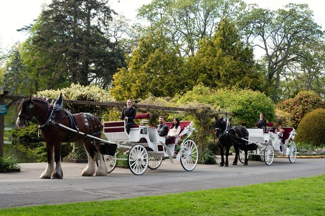45-Minute Beacon Hill Park Horse-Drawn Carriage Tour photo 6