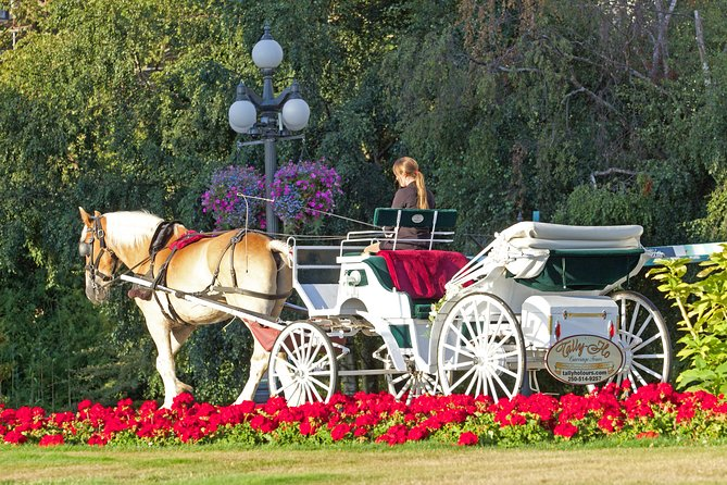 45-Minute Beacon Hill Park Horse-Drawn Carriage Tour photo 2