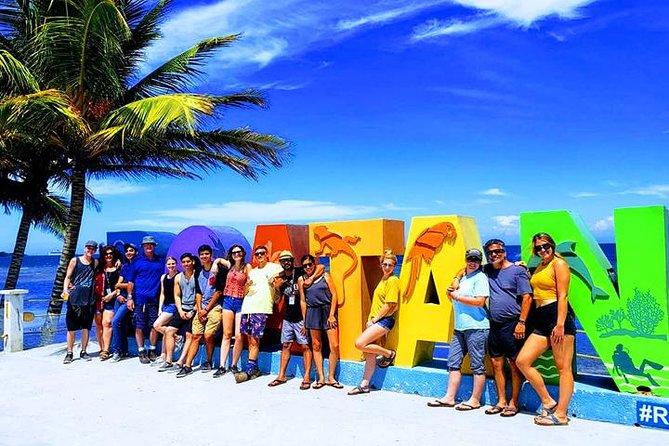 Let's Go Native Roatan City Cultural Tour, Transfer
