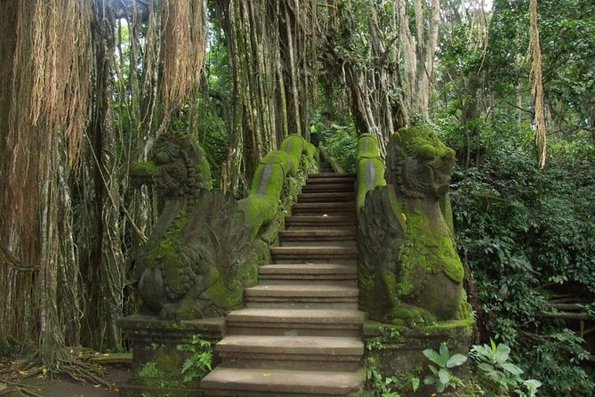 Ubud Tour with Monkey Forest & Balinese Healing