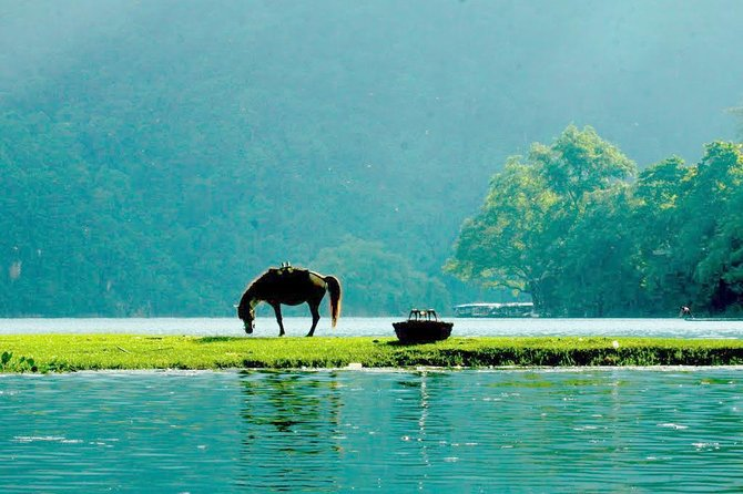Ba Be national park 2D/1N: Boat trip - Swimming, Full meals & homestay