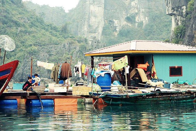 Private Halong Bay In Day photo 7