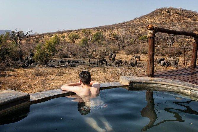 2 day ALL inclusive luxury safari Impodimo Lodge South Africa