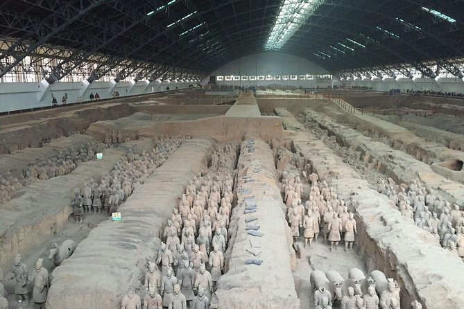 Xi'an in One Day: Day Trip from Shanghai by Air - Terra-Cotta Warriorrs & Horses