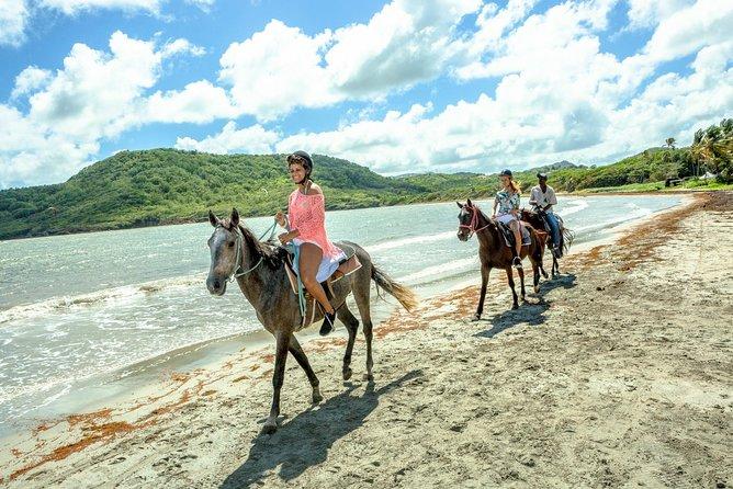 Horseback Ride 'n' Swim St. Lucia From Castries