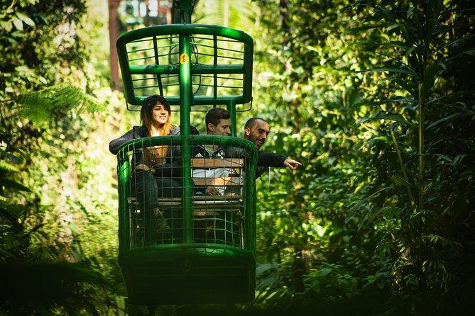 Rainforest Adventures Aerial Tram Tour Braulio Carrillo